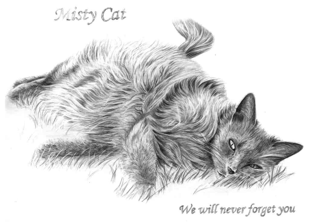 Memorial Drawing of Cat